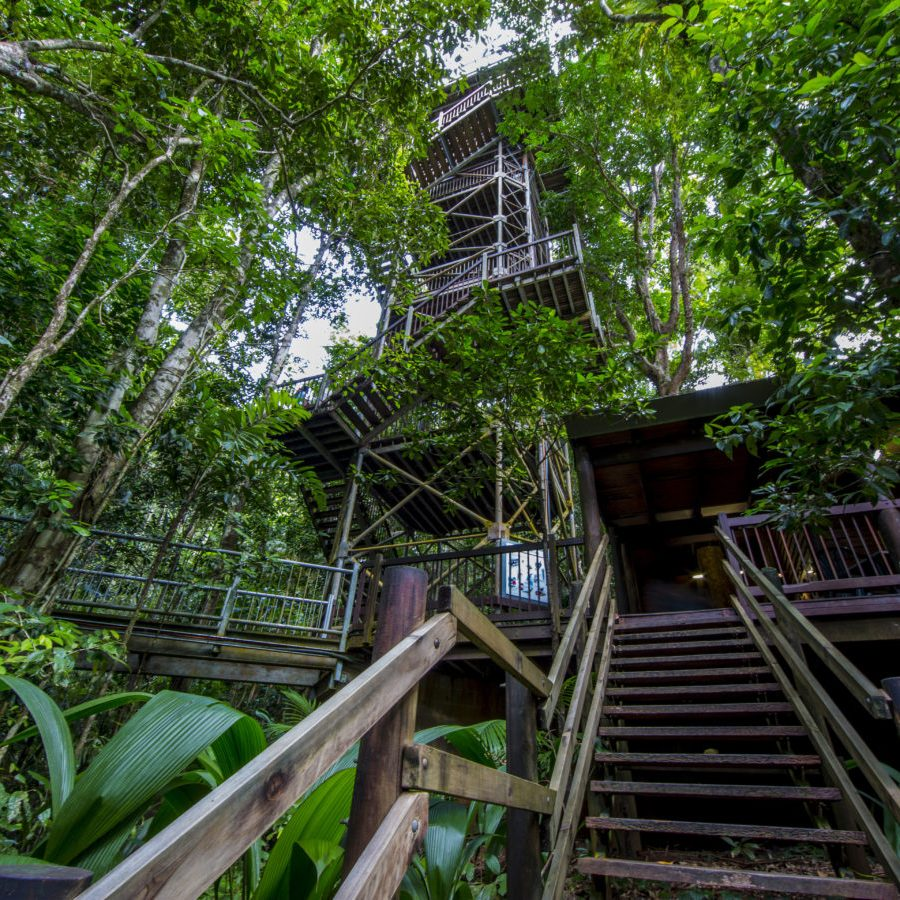 01 Daintree_Discovery_Centre